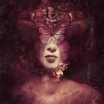 butterfly_Restlessness Federico Bebber