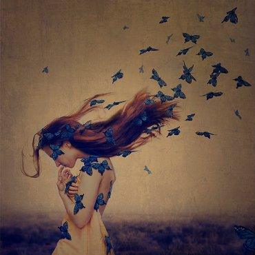 butterfly_the sound of flying souls, part 1BrookeShaden