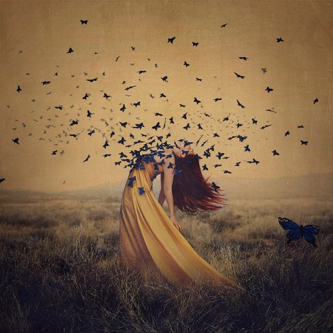 butterfly_the sound of flying souls, part 2 BrookeShaden